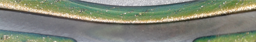 Morse Dish Dichroic12